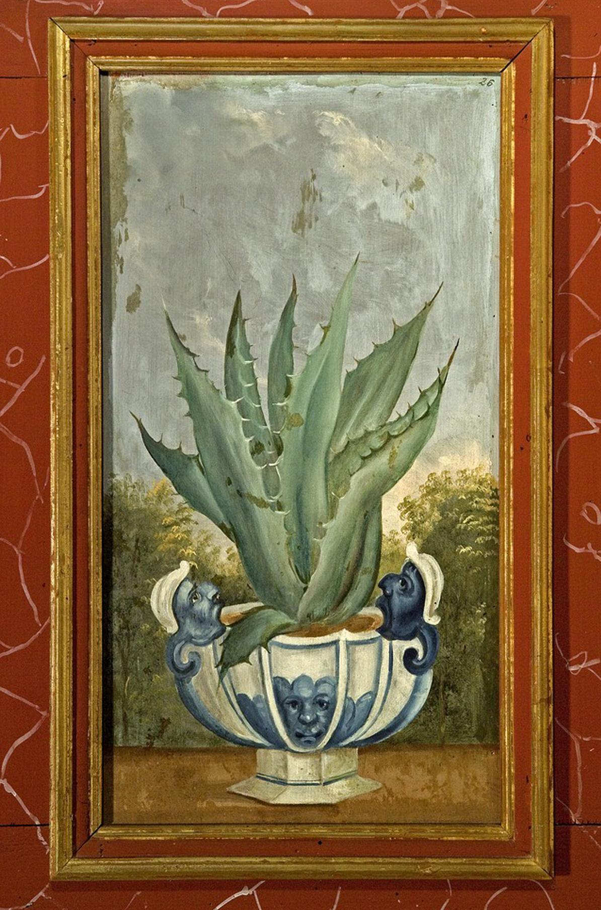 Aloe Vera, Lambrisbild im Rittersaal, Schloss Weikersheim; Foto: Landesmedienzentrum Baden-Württemberg, Arnim Weischer