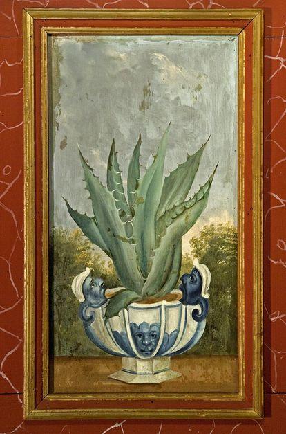 Aloe Vera, Lambrisbild im Rittersaal, Schloss Weikersheim