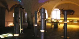 """Raum der Ausstellung """"Alchemie in Weikersheim"""""""