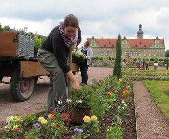Gärtnerinnen im Schlossgarten Weikersheim; Foto: Staatliche Schlösser und Gärten Baden-Württemberg, Sonja Wünsch
